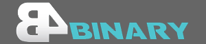 b4binary review