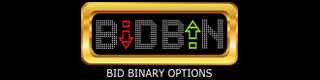 Bid Binary Choices Review