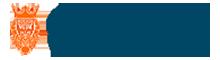 TradersKing Logo